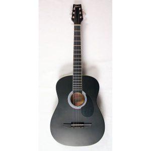 Chitara acustica Freedom CAG-350M BK