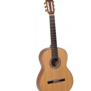 chitara clasica sm 500