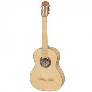 Chitara clasica Eco Silver 1_2 Paltin Hora Reghin_fișiere