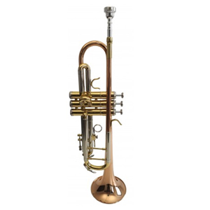 Trompeta Flame Pro TP M4300G SRR Trumpet